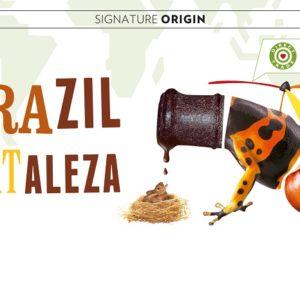 Brazil-Fortaleza
