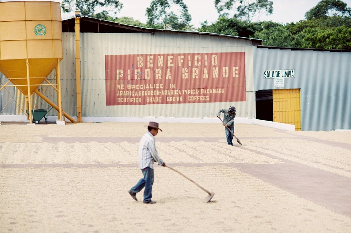 El-Salvador-Menendez-work